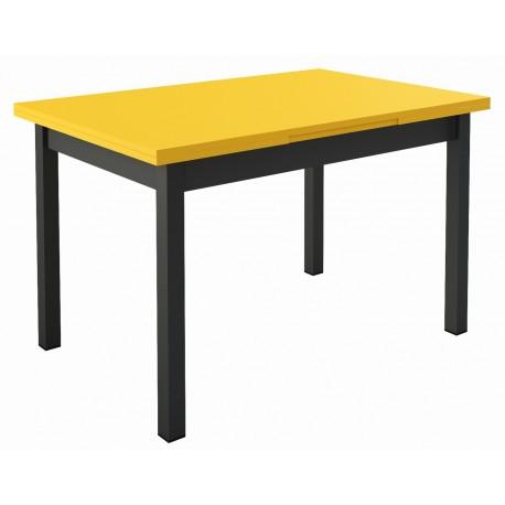 Table de cuisine 2 allonges